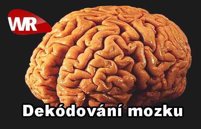 Dekódování mozku